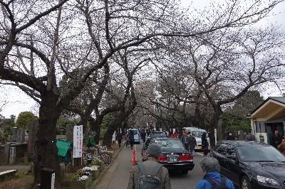 A160321 上野から谷中へ (28).JPG