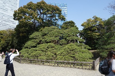 A180329 上野家と東京巡り (6).JPG