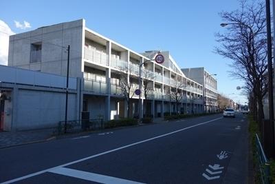 A 190313 仙川 安藤ストリート (4).jpg