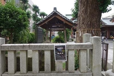 A 190713 柏神社ロケハン (18).jpg