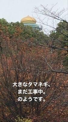 A UHLQ8395.jpg